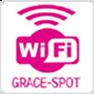 WiFi GRACE-SPOT